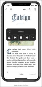 Scree Speak options on an Apple iPhone